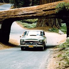 Up the coast in the Toyopet! In 1957 Toyota executives cruised from LA to San Francisco.