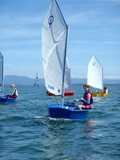 Kids Sailing colored Opti Dinghies in New Zealand