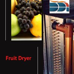 Dried food is more straightforward to manage and pack, and it's strong and minimal, anyway it can contain more calories when you contrast it and new fruit. Sustenance esteems furthermore can change contingent on how the dried fruit is prepared utilizing a #fruit_dryer. Fruit Dryer, Food Dryer, Kinds Of Fruits, Best Fruits, Dried Vegetables, Nutritional Value, New Fruit, Dehydrated Food, Dehydrator Recipes