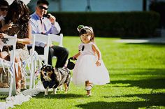 The best person to send the family dog down the aisle with? A 10-or-under walker! Photo by Sloan Photographers via Green Wedding Shoes