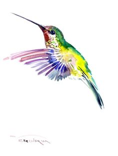 Flying Hummingbird 12 X 9 in original watercolor by ORIGINALONLY