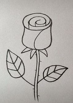 Rose Drawing Easy Rose Drawing Easy Image by Julia Klüber Top Richtlinien Spiel Mom tapes a donkey to the far. Easy Pencil Drawings, Cute Easy Drawings, Art Drawings Sketches Simple, Art Drawings For Kids, Doodle Drawings, Drawing Ideas, Disney Drawings, Best Drawing For Kids, Easy Halloween Drawings