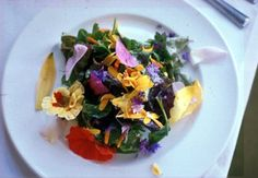 Edible flower salad - Brenton and I went to a place in West Salem (Annette's) that has flowers on their salad bar - violas were my fav. :D