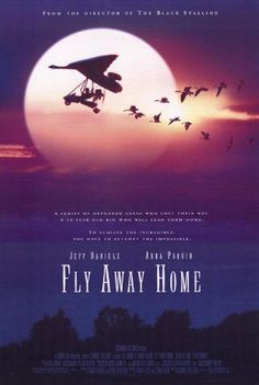 Directed by Carroll Ballard. With Jeff Daniels, Anna Paquin, Dana Delany, Terry Kinney. A father and daughter decide to attempt to lead a flock of orphaned Canada Geese south by air. Birds Flying Away, Bird Flying, Father Goose, Harriet The Spy, Flies Away, Black Stallion, Columbia Pictures, Home Movies, Universal Pictures