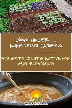Agroplus casero es un biofertilizante de amplio espectro para aplicaciones en todo tipo de plantas y cultivos orgánicos. Su fácil realización y el bajo costo de los componentes a utilizar, ofrecen una gran alternativa a la hora de fertilizar el suelo y las plantas. Single Wide, Bass, Homemade, How To Make