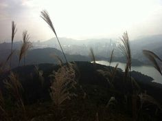 Hike in the New Territories. | 11 Ways To Conquer Hong Kong Like A Local