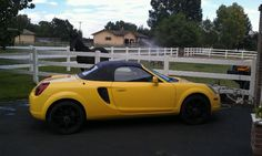 2002 Toyota Mr2 spider~ my first sports car,loved it!