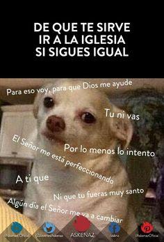 De que te sirve ir a la iglesia #memes #perrito
