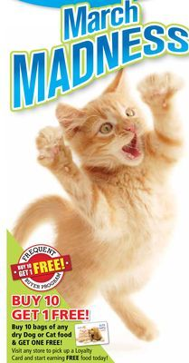 Buy 10 Bags of Any Dry Dog or Cat Food & Get One Free! March Madness, Cat Food, Get One, Free Food, Dog, Cats, Stuff To Buy, Animals, Cat Feeding