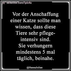 1pic4u #schwarzerhumor #geil #markieren #funnypictures #lachflash #witzig #funnypicsdaily #photooftheday #werkennts #liebe