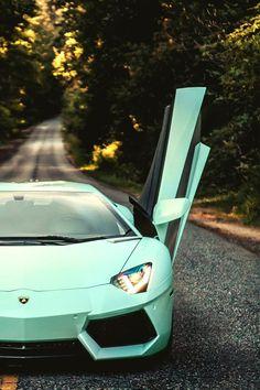 ♂ car from http://classyhustler.tumblr.com/post/45909093857/classyhustler-mint-aventador-via-moniques