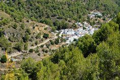 The Lost Village of El Acebuchal: