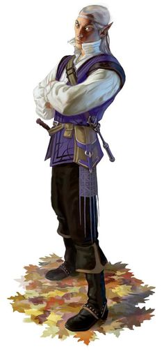 High elf. Could be non-adventurer type like a merchant, or he could be a rogue or sorcerer.