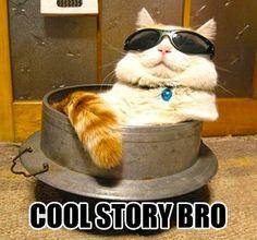 Cool story bro…