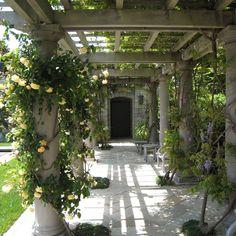 Locksley Hall   Gardens: Flower to Form