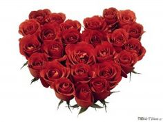 Day gifts for him The Best Valentines Day Gifts 2014 - yazarbozar.or En Gzel Sevgililer Gn Hediyeleri 2014 yazarbozar.or Best Valentines Day Gifts 2014 It is yazarbozar. Hello February Quotes, Best Valentine's Day Gifts, Her Campus, Valentines Day Gifts For Him, Food Gifts, Christmas Wreaths, Holiday Decor, Handmade, Heart