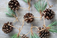 Escape: Go foraging PLUS natural festive decoration/gift ideas — The Simple Things