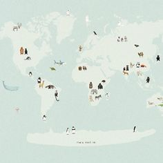 Animal Map of the World, large print with beautiful illustrations by Katie Viggers