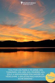 """""""Folyton változik a tó színe: hol türkizkék, hol kék, hol fehéres, hol zöld. A nádasokban sok madár lel védelemre. A Balaton Magyarország egyik ékköve.""""  Nekem a Balaton... Mindannyiunk kedvenc magyar tengere még mindig sok csodát és megannyi programot kínál gyerekeknek és felnőtteknek egyaránt. Összegyűjtöttük a legjobbakat! #utazás #család #Balaton #Balatoniprogramok Celestial, Sunset, Sports, Outdoor, Hs Sports, Outdoors, Sunsets, Outdoor Games, Sport"""