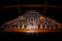 L'Orchestre National du Capitole de Toulouse (c) Patrice Nin