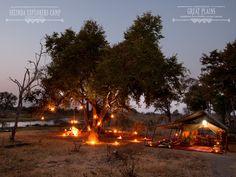 A bush camp of luxury  - Selinda Explorers Camp