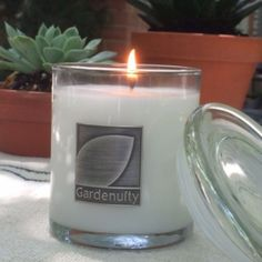 Mosquito Repellent Candle by Gardenuity