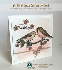 Beautiful Best Birds Watercolor Birthday Card, Best Birds Photopolymer Stamp Set by Stampin' Up! Stesha Bloodhart, Stampin' Hoot!