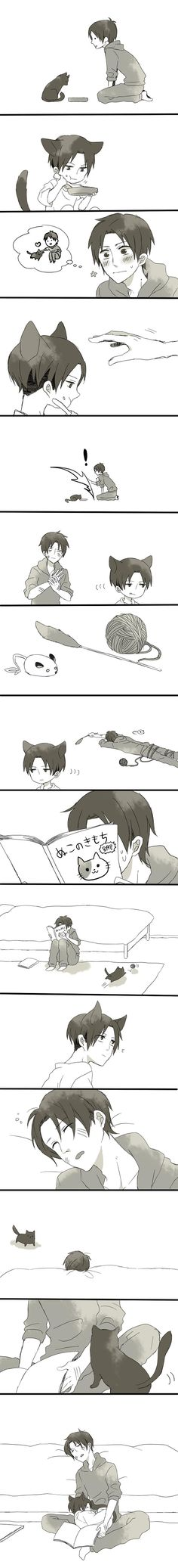 Eren and neko levi // AoT <<< This is actually so cute