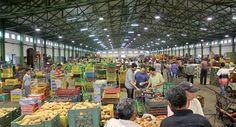 تعرف على أسعار الخضروات اليوم الثلاثاء بسوق العبور للجملة -     الأصناف السعر من السعر إلى العبوة حجم العبوة  خضار طماطم 2.5 4 قفص 18  20  22 كيلو فئة الصنف  خضار بطاطس 2.5 3.7 شوال 55  71  81 كيلو فئة الصنف  خضار بصل 3.25 7 شوال 55  71 كيلو فئة الصنف  خضار كوسة 2.5 4 قفص 20  35 كيلو فئة الصنف  خضار جزر بعروش 0 0 رابطة  فئة الصنف  خضار جزر بدون عروش 1.25 2.25 شوال 55  71 كيلو فئة الصنف  خضار جزر احمر 0 0 شوال  فئة الصنف  خضار فاصوليا 11 13 شوال  تكنة بلاستيك 55 كيلو للشوال  8  12 للتكنة…