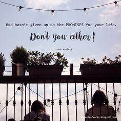 I will not take back one word of what I said.- Psalm 89:34   #godspromise #godspromises #godkeepshispromises #godisfaithful #wisdomfromthebible #wisewords #inspirationalquote