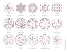 https://www.tumblr.com/search/sacred geometry