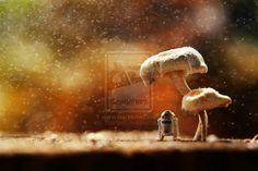 Shade by ZahirBatin.deviantart.com on @deviantART