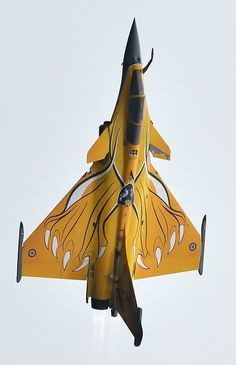 French Dassault Rafale.  I think all fighter jets should be painted in some fashion.  That would rule!