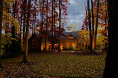 Outdoor Lighting Perspectives of Louisville provides quality outdoor lighting solutions backed by years of experience. Patio Lighting, Exterior Lighting, Landscape Lighting Design, Commercial Lighting, Lighting Solutions, Garden Landscaping, Outdoor Gardens, Lights, Architecture
