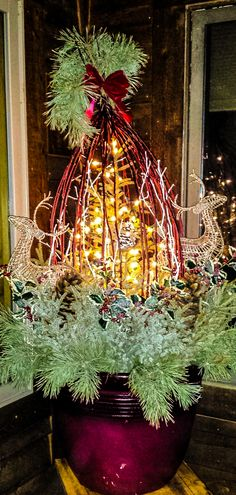A few extras like lights and the deer, bring this #winterpot alive. #holidaydecor