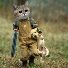 We have a big cat. And a small dog. But the little dog puts up a good fight. I know that cat has this dream. http://northtexastannery.bravesites.com/