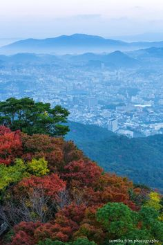 View from Mt. Inasa, Nagasaki, Japan | Junichi Kato 稲佐山