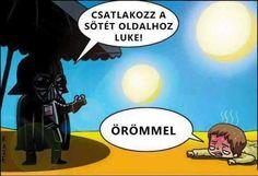 Joy of the Dark side ! Emoticon, Funny Memes, Hilarious, Jokes, Starwars, Darth Vader, Ewok, Humor Grafico, Star Wars Humor