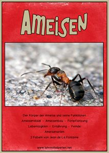 Ameisen Ampelheft Rot