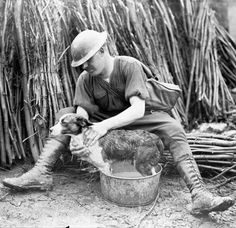 A Canadian soldier is giving his dog a bath, February 1918.