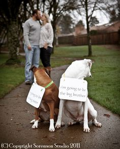 We could do this with Charlie and Cooper...