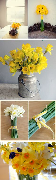 Dashing Ways With Daffodils