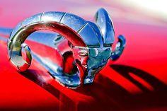 1952 Dodge Ram Hood Ornament - Car Images by Jill Reger Ram Accessories, Mustang, Automobile, Car Hood Ornaments, Michigan, Car Badges, Pt Cruiser, Dodge Trucks, Dodge Cummins
