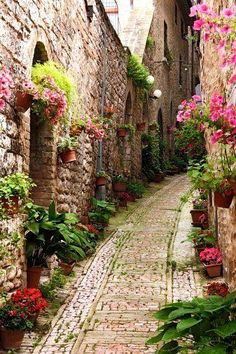 """An alley in Spello, Umbria, Italy. Can't you just imagine strolling down this """"road,"""" all the smells, sounds, with a good cup of coffee or tea...ahhh"""