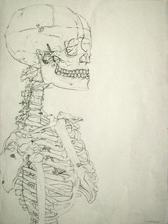 Blind Contour Skeleton Study by Hello Mushy!, via Flickr
