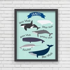 I Love Whales! Art Print | Lucy Darling