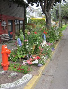 1000 images about curbside parkway landscaping on for Curbside garden designs