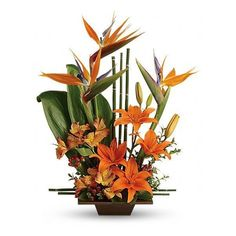 Teleflora's Exotic Grace Flowers, Teleflora's Exotic Grace Flower... ❤ liked on Polyvore featuring home, home decor, floral decor, flowers, backgrounds, plants, flower home decor, flower stem and flower bouquet