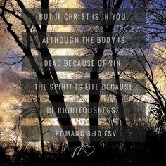 Faith Moves Mountains, Move Mountains, Romans, Pray, Christ, Life, Novels