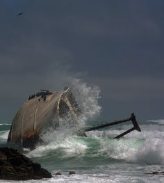The wreck of the Meisho Maru 38 at Cape Agulhas - 30 Incredible & Tragically Beautiful Images of the World's Most Haunting Shipwrecks Abandoned Ships, Abandoned Places, Costa, Ghost Ship, World Images, Shipwreck, Tall Ships, Water Crafts, Belle Photo